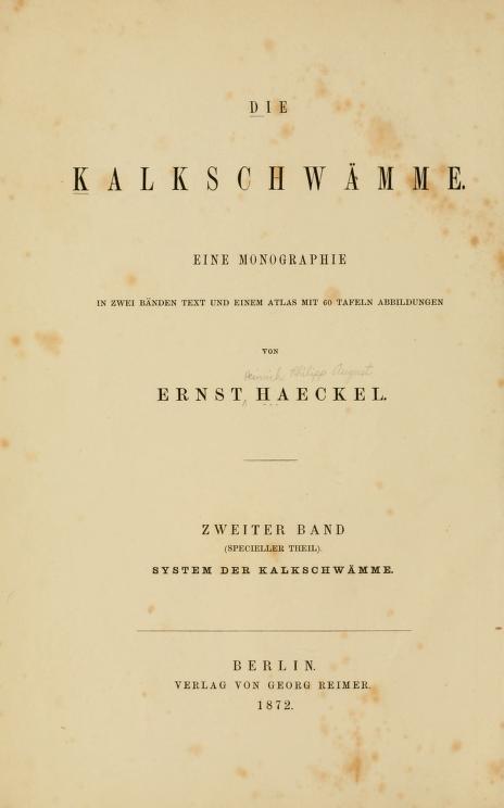 Volume 2 - Die Kalkschwamme. Eine Monographie - System der Kalkschwamme (Calcispongien oder Grantien)